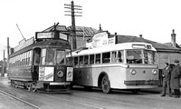 Auckland tram 255 and trolleybus 5
